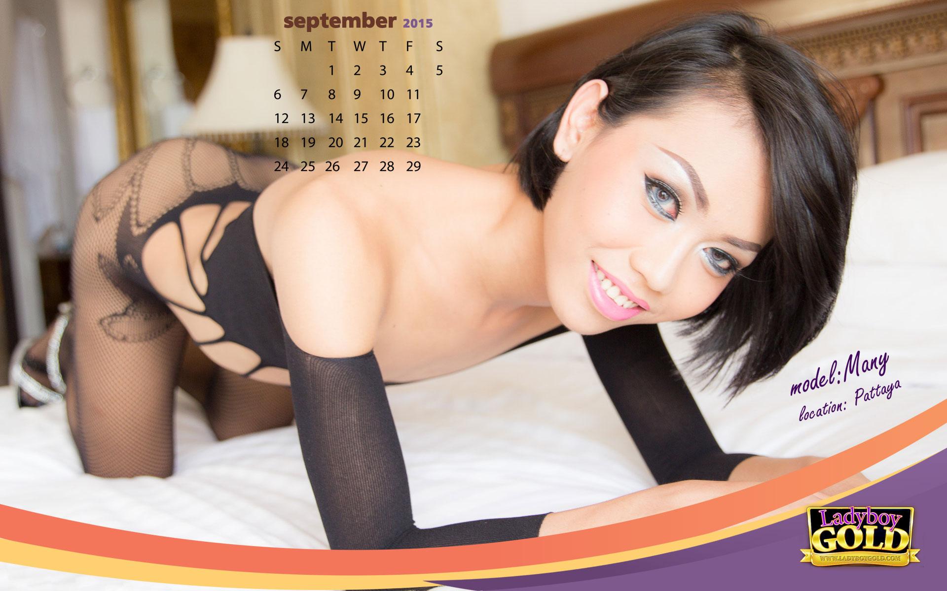 Ladyboy Calendar 2015