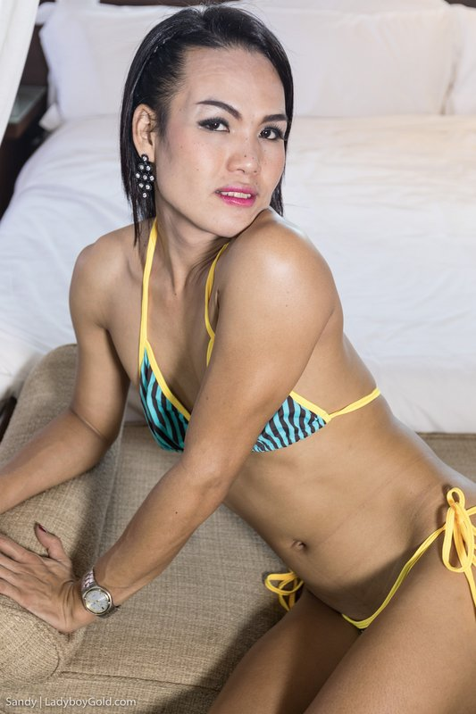 New Ladyboy Gold Girls