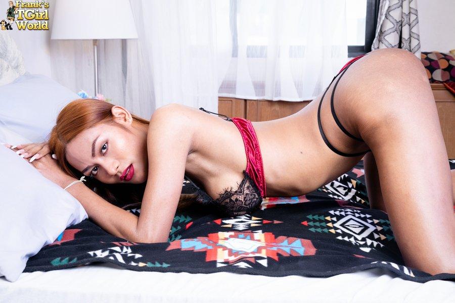 Sexy Bangkok LAdyboy Sarah