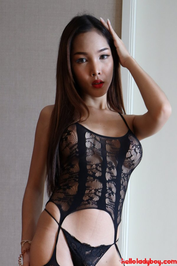 Hello Ladyboys Hot Beauty