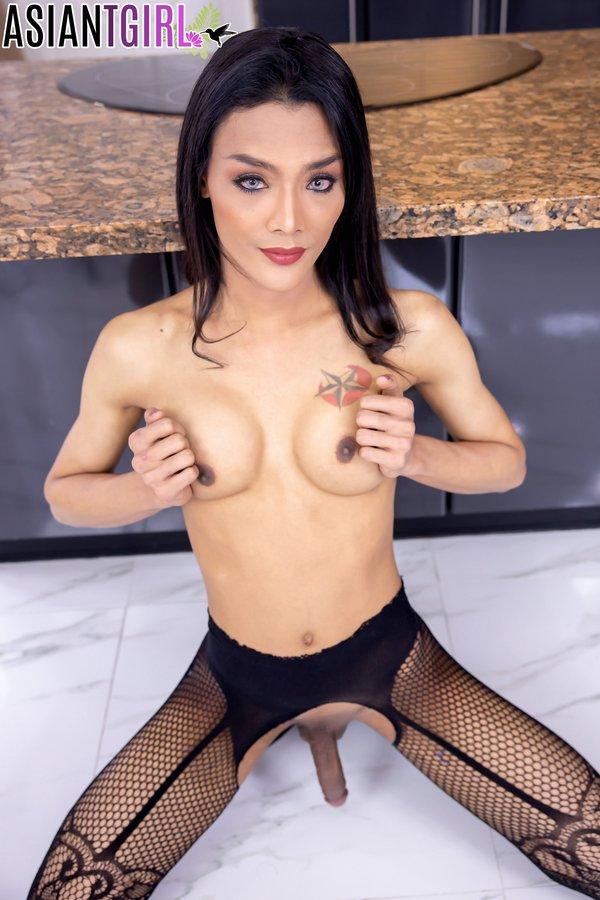 Asian Ladyboy Aris