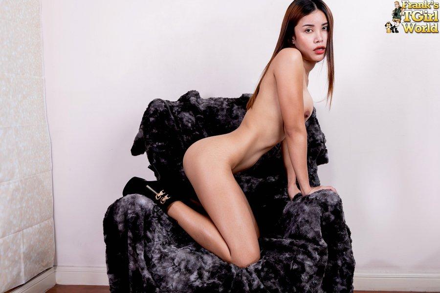 Bangkok Ladyboy Kitty