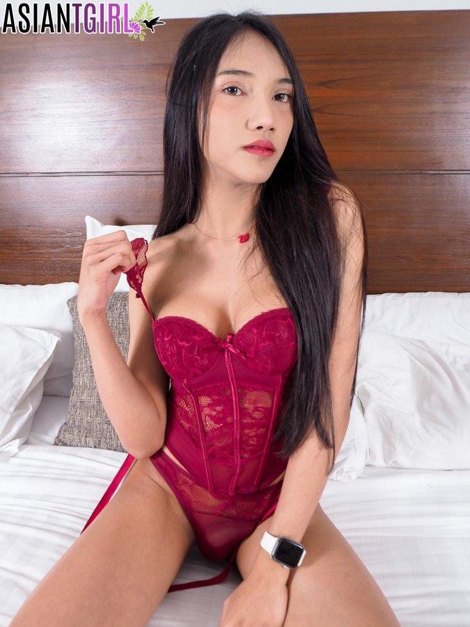 Bangkok Ladyboy Alice